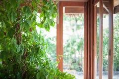 Pianta alta della casa davanti ad una linea di finestre Fotografie Stock