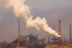 Pianta con smog bianco Immagini Stock Libere da Diritti