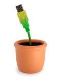 Pianta conservata in vaso con il cavo del usb Fotografia Stock Libera da Diritti