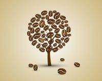 Pianta del caffè Fotografie Stock