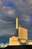 Pianta del carbone Fotografia Stock Libera da Diritti