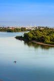 Pianta del delta del fiume Fotografia Stock