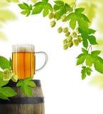 Pianta del luppolo e della birra nel retro stile Fotografia Stock