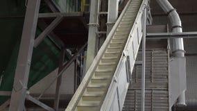 Pianta del negozio per la produzione delle palline dalla biomassa Combustibile biologico stock footage