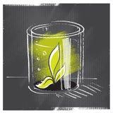 Pianta del semenzale protettiva con un vetro Fotografia Stock
