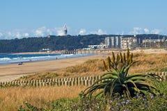 Pianta dell'aloe e vegetazione della duna sull'orizzonte costiero della spiaggia Fotografie Stock