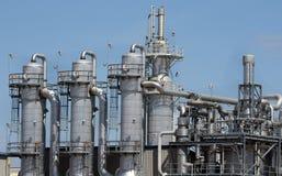 Pianta dell'etanolo Fotografia Stock Libera da Diritti