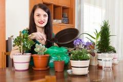 Pianta di trapianto dei fiori della donna in vaso da fiori Fotografie Stock Libere da Diritti