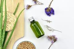 Pianta di vera dell'aloe, prodotto di bellezza naturale dello skincare Contenitori cosmetici della bottiglia con le foglie di erb Fotografie Stock Libere da Diritti