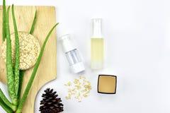 Pianta di vera dell'aloe, prodotto di bellezza naturale dello skincare Contenitori cosmetici della bottiglia con le foglie di erb Fotografia Stock Libera da Diritti