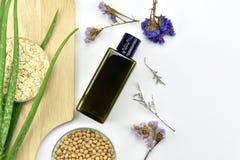 Pianta di vera dell'aloe, prodotto di bellezza naturale dello skincare Contenitori cosmetici della bottiglia con le foglie di erb Fotografia Stock