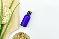 Pianta di vera dell'aloe, prodotto di bellezza naturale dello skincare Contenitori cosmetici della bottiglia con le foglie di erb Immagini Stock Libere da Diritti