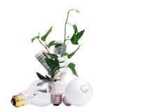 Pianta e soldi in lampadina efficiente Fotografia Stock Libera da Diritti