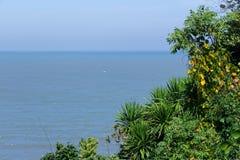 Pianta fertile della giungla vicino all'oceano con la singola onda nel dist Fotografia Stock