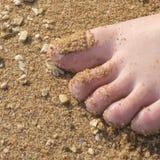 Pianta i piedi di traverso sulla sabbia Fotografie Stock