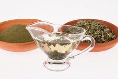 Pianta medicinale di infusione di Moringa Immagini Stock