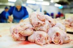 Pianta per trasformare pollame nell'industria alimentare fotografia stock