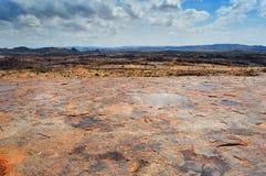 Pianta selvatica dell'aloe nel paesaggio africano roccioso Immagine Stock Libera da Diritti