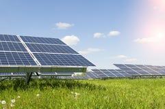 Pianta solare Immagini Stock