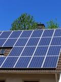 Pianta solare Immagine Stock Libera da Diritti