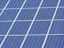 Pianta solare Fotografie Stock Libere da Diritti