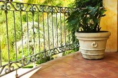Pianta sulla veranda messicana coperta di tegoli Immagine Stock