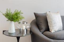 Pianta in vaso bianco sulla tavola rotonda con il sofà ed i cuscini Fotografie Stock Libere da Diritti