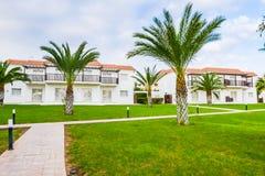 Pianta verde di costruzione della palma Immagini Stock Libere da Diritti