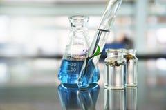 Pianta verde di permesso in provetta e fiore di vetro in fiala con la soluzione liquida blu in boccetta al laboratorio di scienza fotografia stock