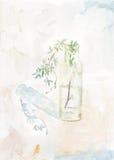 Pianta verde in una bottiglia di vetro Fotografie Stock