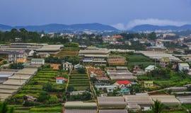 Piantagione in altopiani di Dalat, Vietnam Fotografie Stock