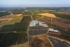 Piantagione degli alberi arancioni Immagine Stock Libera da Diritti
