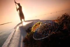 PIANTAGIONE DELL'ASIA INDONESIA BALI NUSA LEMBONGAN SEAWEAD Fotografie Stock