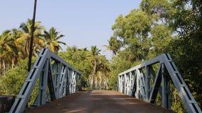 Piantagione della noce di cocco e del ponte Immagine Stock Libera da Diritti