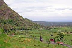 Piantagioni del riso sull'isola di Bali Fotografia Stock