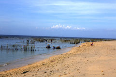Piantagioni dell'alga, Nusa Penida-Bali, Indonesia Fotografia Stock Libera da Diritti