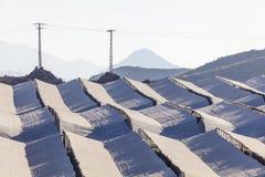 Piantagioni della serra in Spagna Immagini Stock