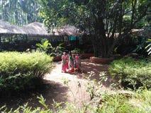 Piantagioni della spezia in Goa Fotografia Stock Libera da Diritti