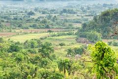 Piantagioni e granai del tabacco al Vinales Valle Fotografie Stock