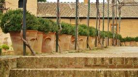 Piantatrici dell'argilla Fotografia Stock