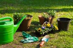 Piantatura Fotografia Stock Libera da Diritti