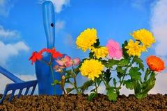 Piantatura dei fiori Fotografie Stock