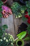 Piantatura dei fiori nel giardino Fotografia Stock Libera da Diritti