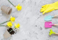 Piantatura dei fiori in vasi di ECO, strumenti di giardinaggio immagini stock libere da diritti