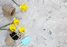 Piantatura dei fiori in vasi di ECO, strumenti di giardinaggio immagine stock libera da diritti