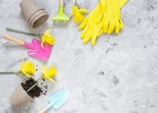 Piantatura dei fiori in vasi di ECO, strumenti di giardinaggio immagini stock
