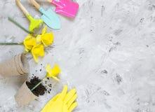 Piantatura dei fiori in vasi di ECO, strumenti di giardinaggio fotografia stock