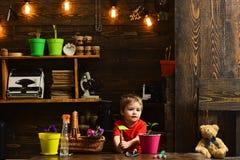 Piantatura del concetto Ragazzino con gli strumenti di giardinaggio per piantare Piantatura del fiore in vaso Piantatura della ma immagini stock