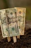 Piantatura finanziaria Fotografia Stock Libera da Diritti