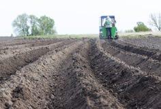 Piantatura le piante e di vari raccolti per mezzo di una macchina di piantatura Concetto: l'agricoltura, primavera funziona nel c Immagini Stock